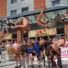 Kangaroo Stilt JUMPERS