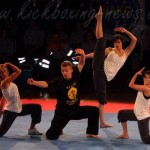 Martial arts entertainers