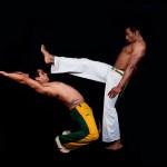 Brazilian Themed Capoeira Show