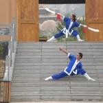 Street Martial Artist performers
