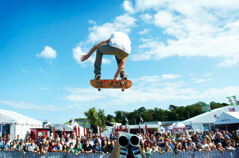Skateboard Spine or Halfpipe show