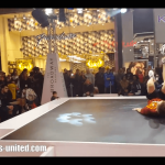 Live Entertainers in Shopping Centers