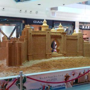 Sand Sculpture Artist