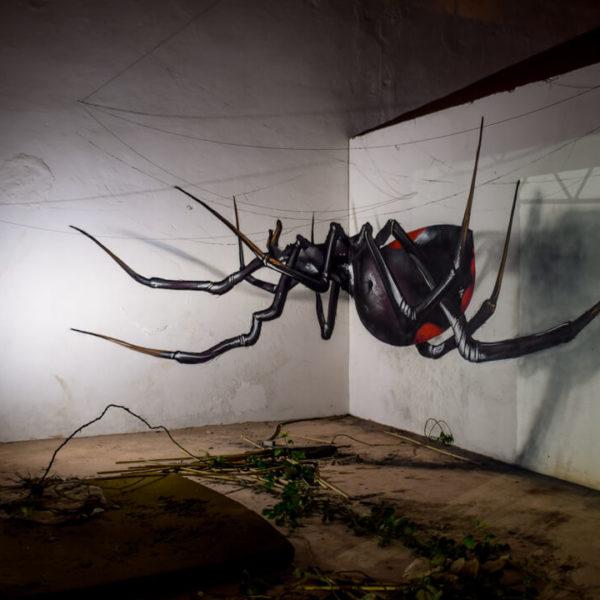 3D Spider street art