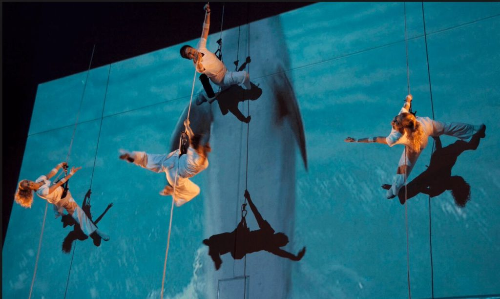Vertical wall acrobatic shows - corporate events