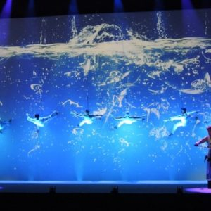 Acrobatic Wall Projection