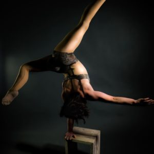Contortion Crossbow show