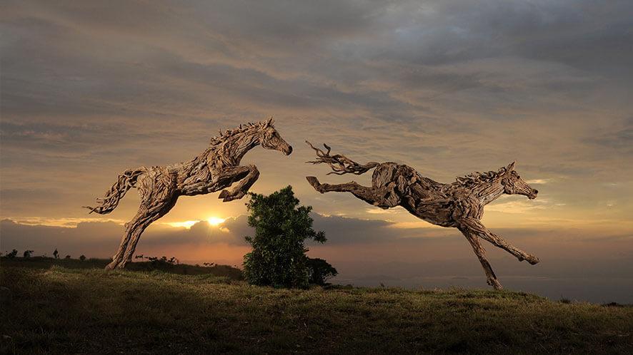 Drift wood sculptures for gardens
