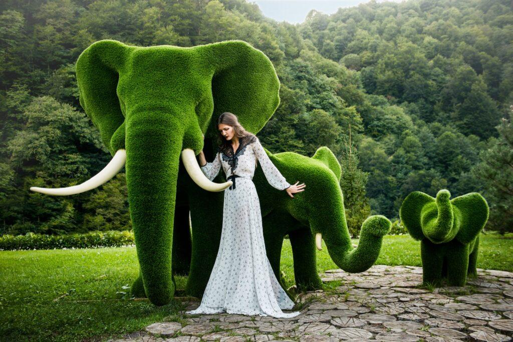 Elephant Creative natural artwork